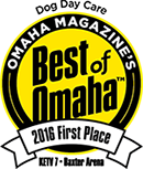 Dog Day Care 1st Place Best of Omaha 2016