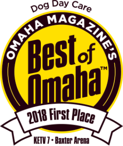 Dog Day Care 1st Place Best of Omaha 2018
