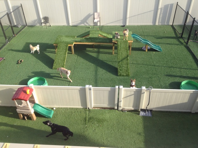 Backyard+Dog+Play+Area also has the largest outdoor play area in the