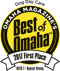 Dog Day Care 1st Place Best of Omaha 2017