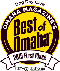 Dog Day Care 1st Place Best of Omaha 2019